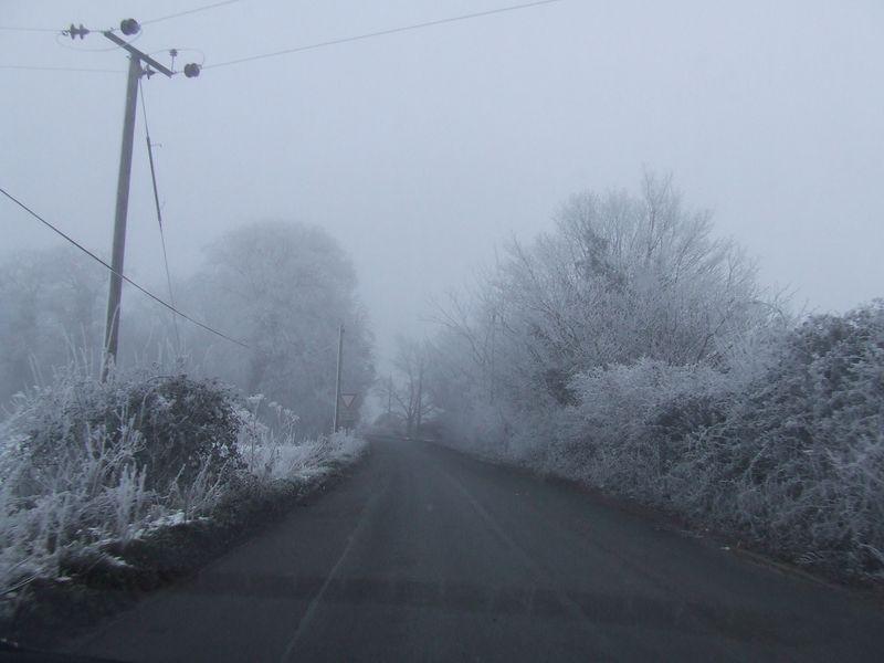 Winter 007